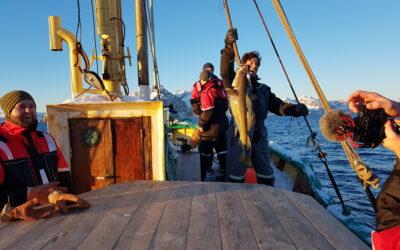 Fishing in Lofoten