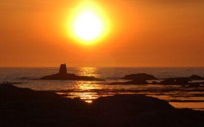 Midnight Sun Safari
