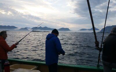 Midnight Sun Fishing